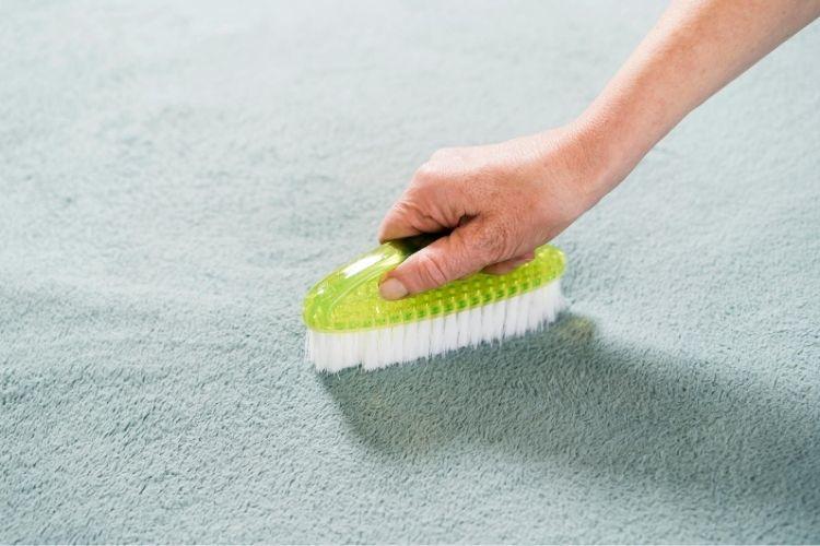 Suché čistenie koberca