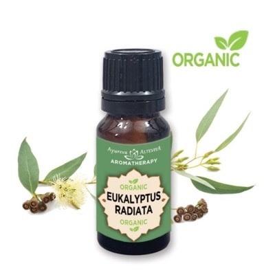 100 % organic esenciálny olej eukalyptus