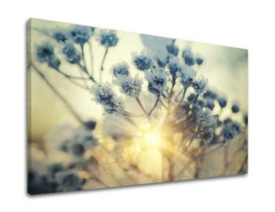 Obraz kvety v škandinávskom štýle